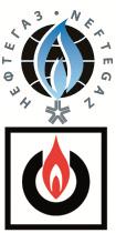 NEFTEGAZ Logo
