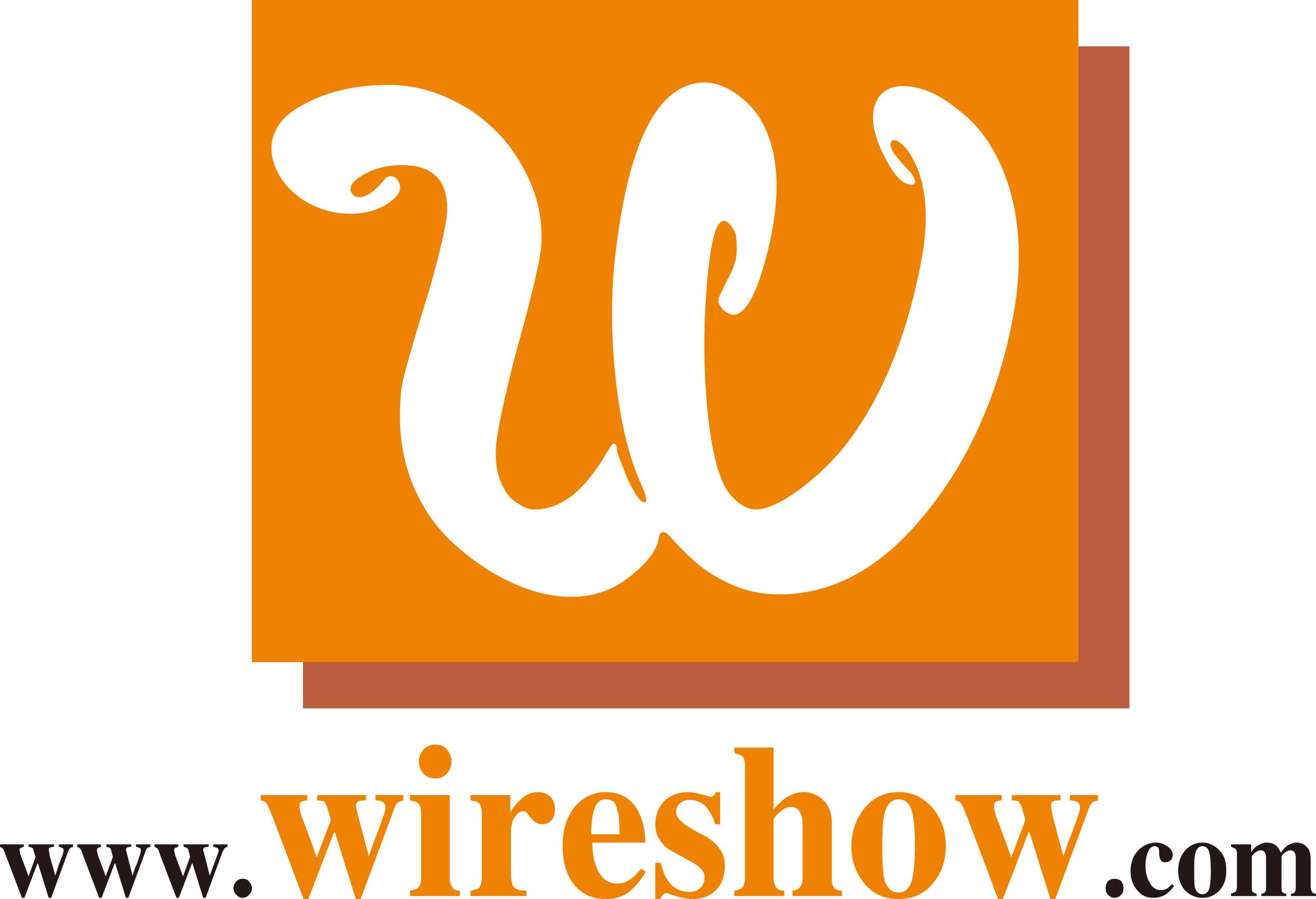 WireShow Logo